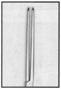 Rochester Pean Forceps